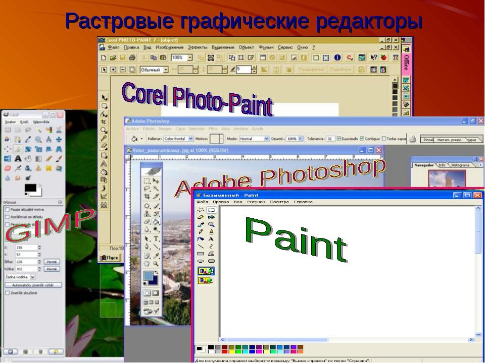 2010 Bolgova N.A. * Растровые графические редакторы Bolgova N.A.