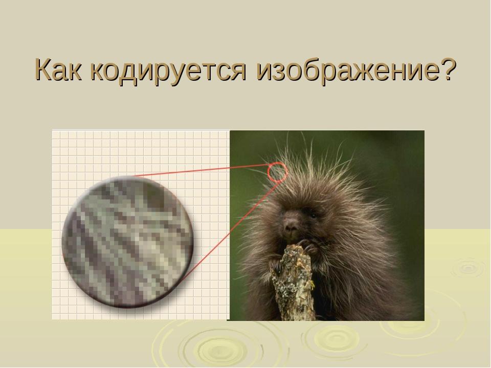Как кодируется изображение?