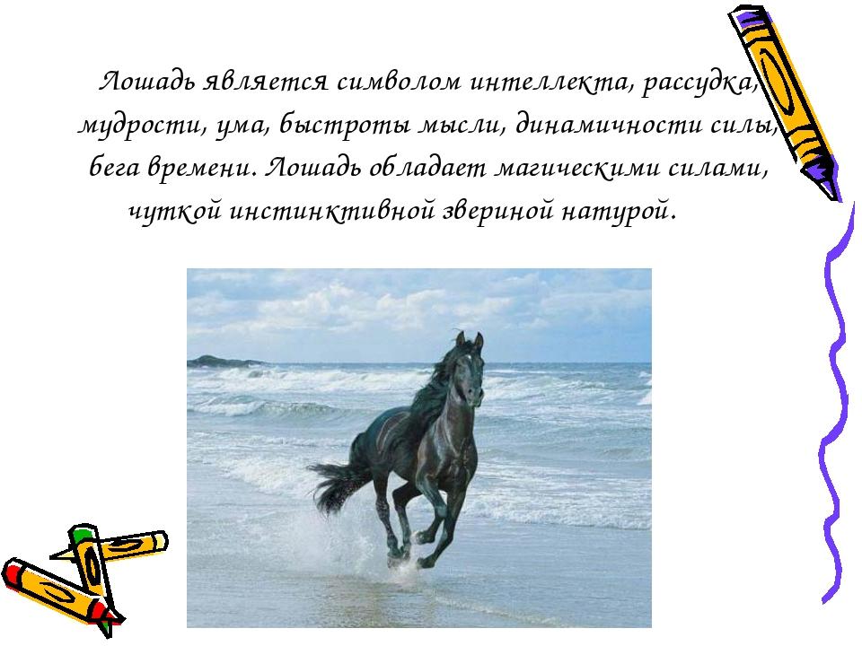 Лошадь является символом интеллекта, рассудка, мудрости, ума, быстроты мысли,...