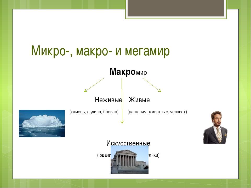 Микро-, макро- и мегамир Макромир НеживыеЖивые  (камень, льдина, бревно)...