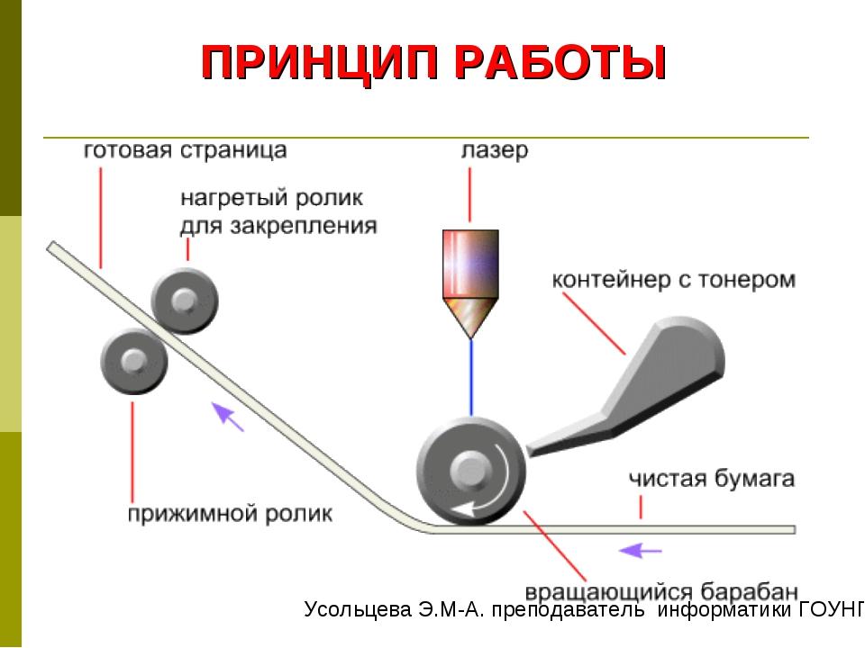 ПРИНЦИП РАБОТЫ Усольцева Э.М-А. преподаватель информатики ГОУНПО КПУ