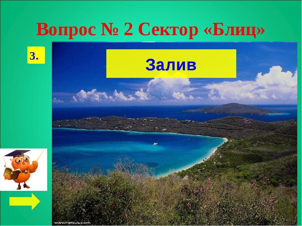Вопрос № 2 Сектор «Блиц» 1. 2. Марианская впадина, 11 022 м 3. Залив