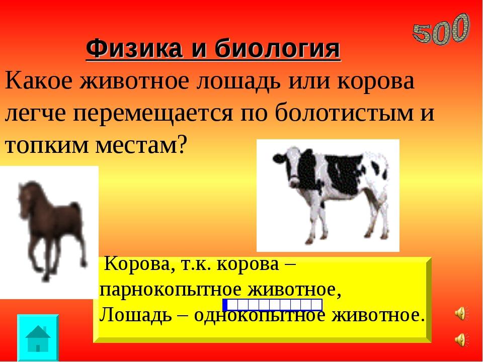 Физика и биология Корова, т.к. корова – парнокопытное животное, Лошадь – одно...