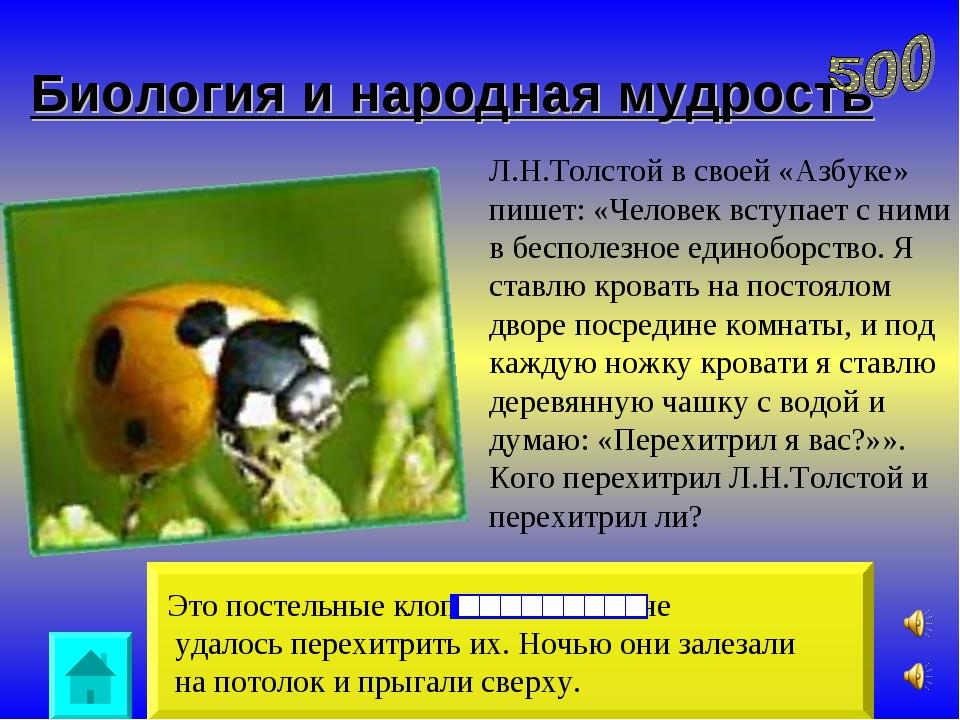 Биология и народная мудрость Это постельные клопы. Писателю не удалось перехи...