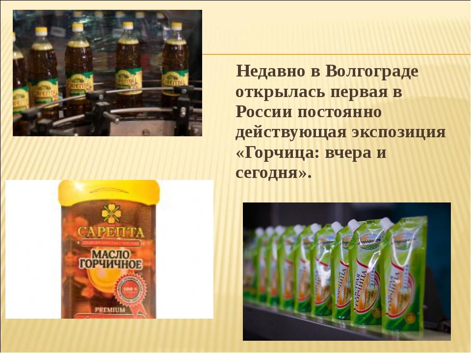 Недавно в Волгограде открылась первая в России постоянно действующая экспози...