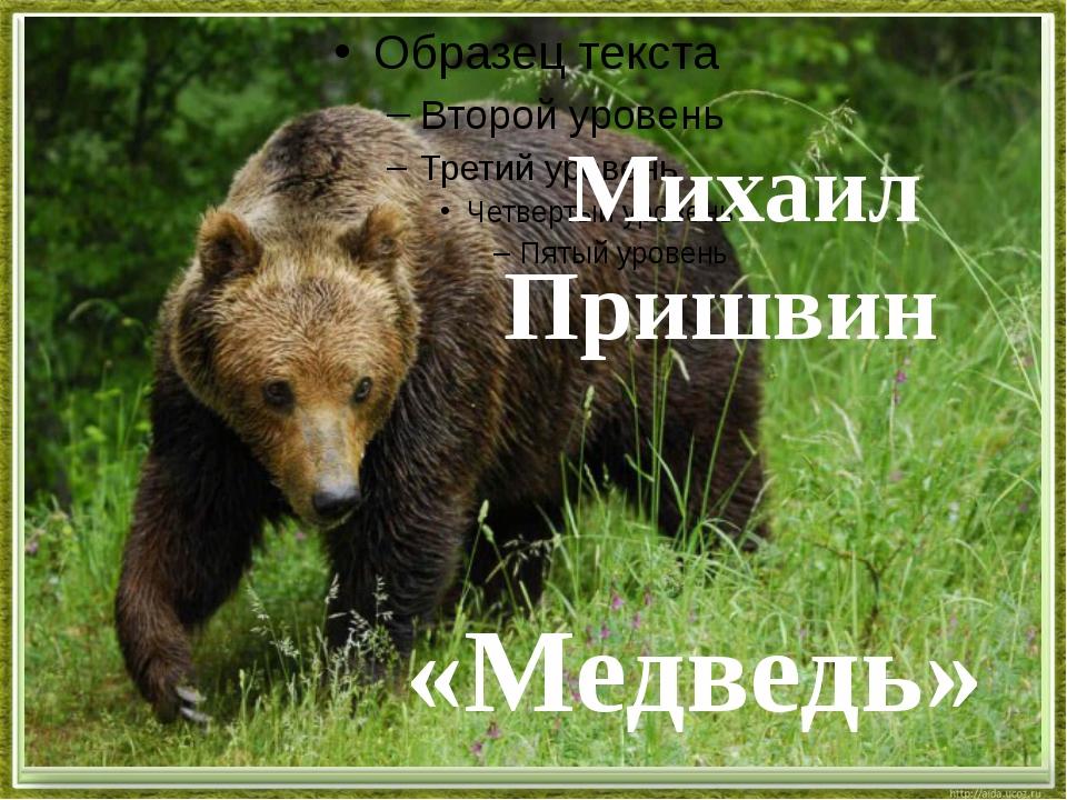 Михаил Пришвин «Медведь»