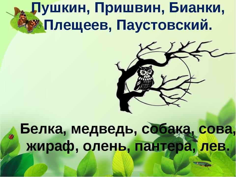 Пушкин, Пришвин, Бианки, Плещеев, Паустовский. Белка, медведь, собака, сова,...