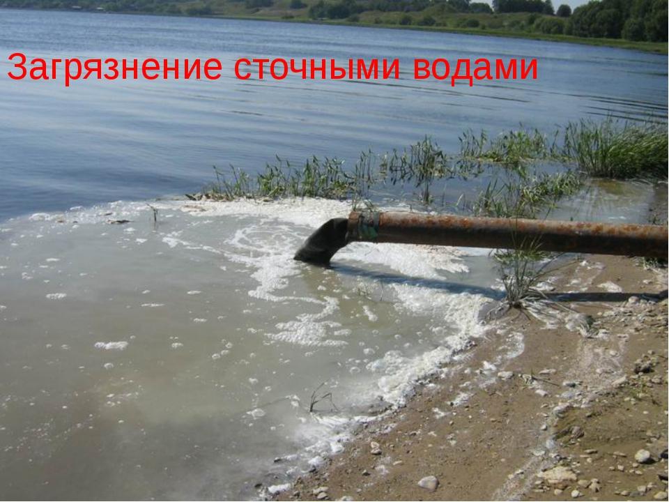 Загрязнение сточными водами