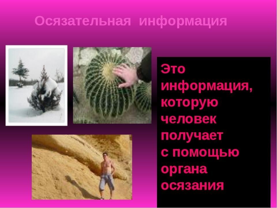 Зрительная информация Что можно сказать об объекте? вид информации