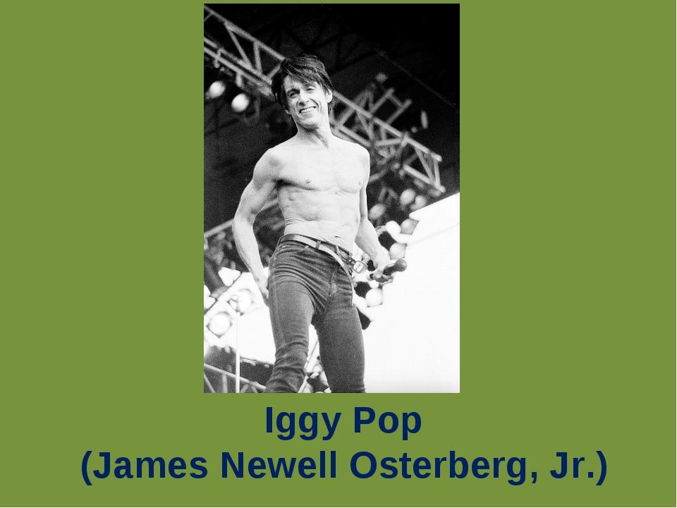 Iggy Pop (James Newell Osterberg, Jr.)