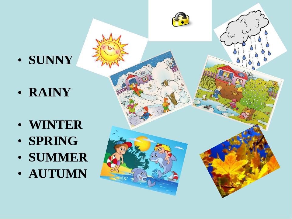 SUNNY RAINY WINTER SPRING SUMMER AUTUMN