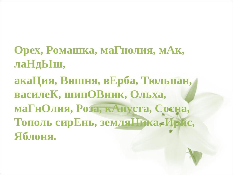 Орех, Ромашка, маГнолия, мАк, лаНдЫш, акаЦия, Вишня, вЕрба, Тюльпан, василеК...