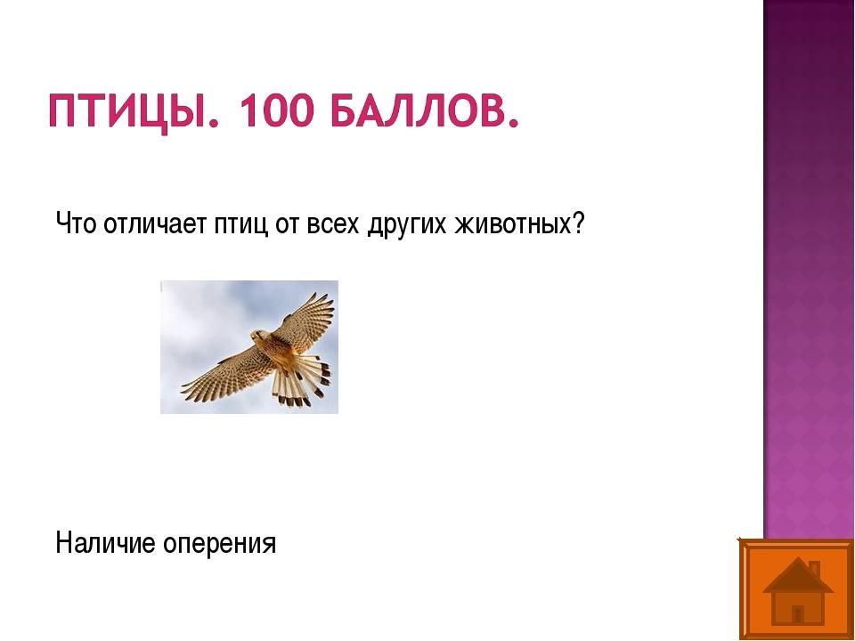 Что отличает птиц от всех других животных? Наличие оперения