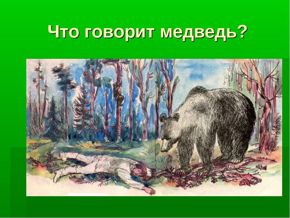 Что говорит медведь?
