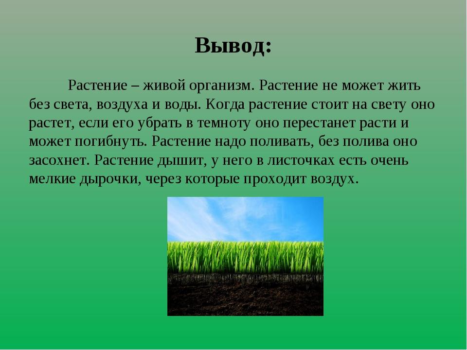 Вывод: Растение – живой организм. Растение не может жить без света, воздуха и...