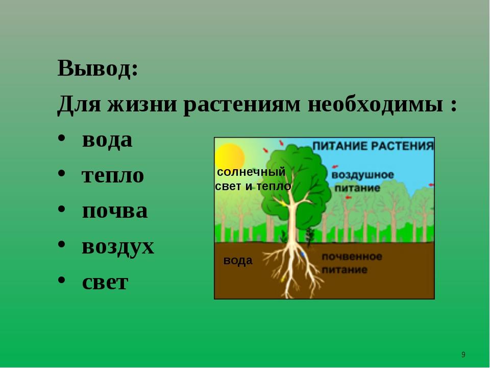 * Вывод: Для жизни растениям необходимы : вода тепло почва воздух свет солнеч...