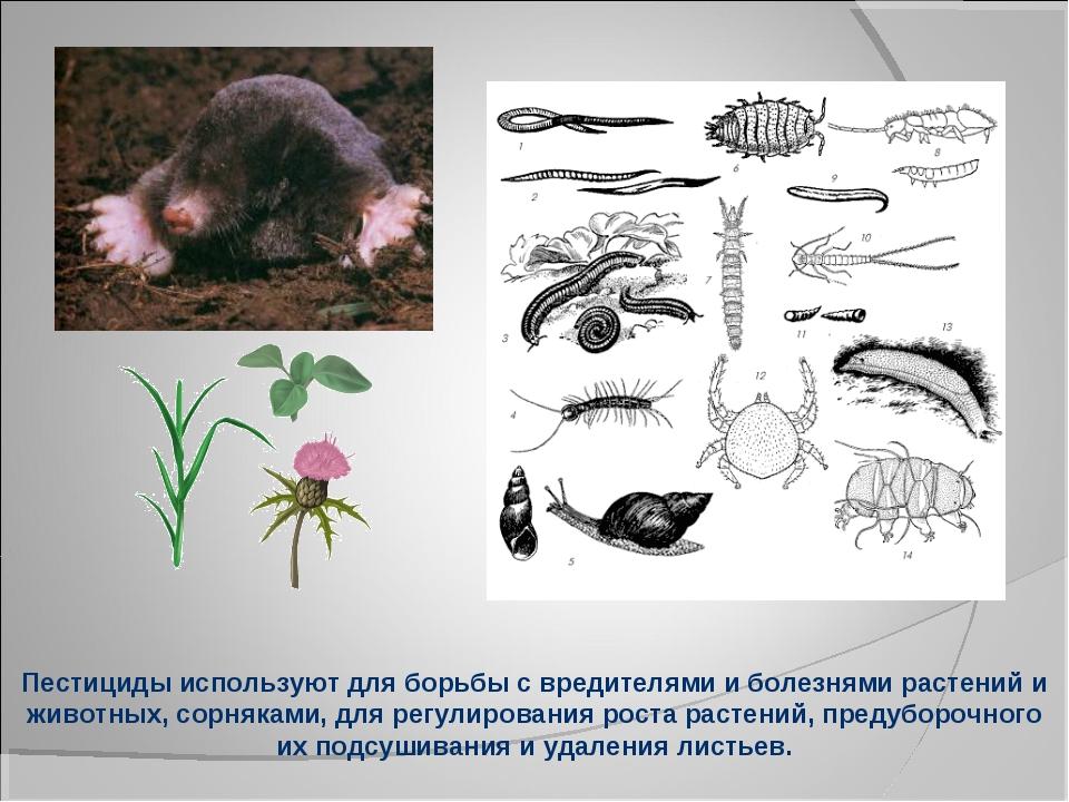 Пестициды используют для борьбы с вредителями и болезнями растений и животных...