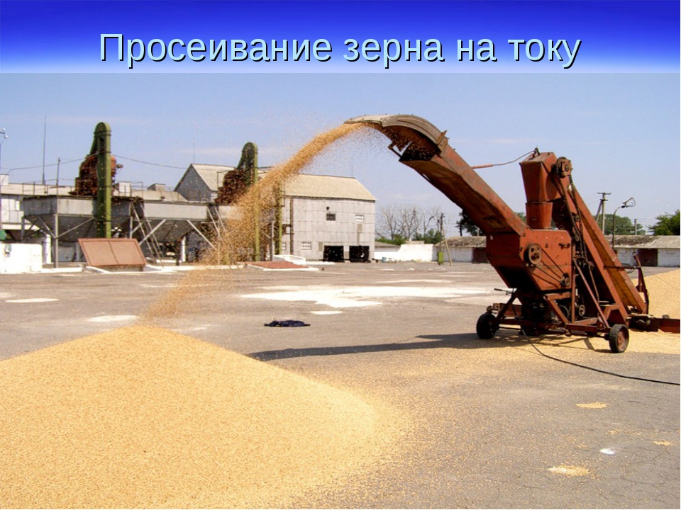Просеивание зерна на току