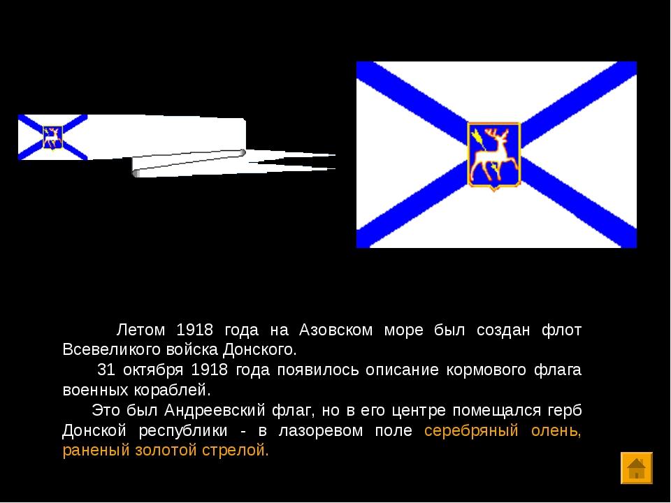 Летом 1918 года на Азовском море был создан флот Всевеликого войска Донского...