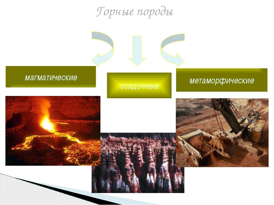 Горные породы магматические осадочные метаморфические