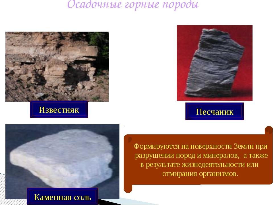 Осадочные горные породы Известняк Каменная соль Песчаник Формируются на повер...
