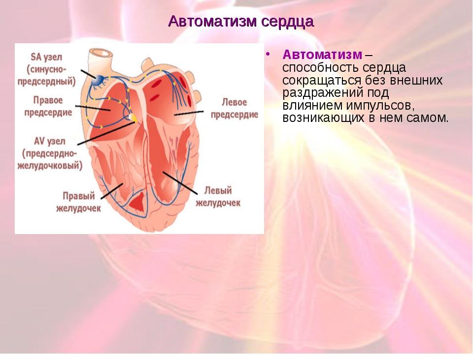 Автоматизм сердца Автоматизм – способность сердца сокращаться без внешних раз...