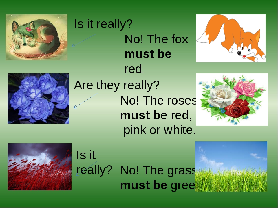 Is it really? No! The fox must be red. Are they really? No! The roses must be...
