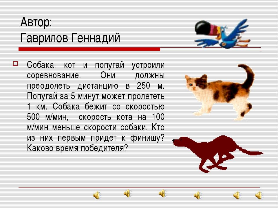 Автор: Гаврилов Геннадий Собака, кот и попугай устроили соревнование. Они дол...