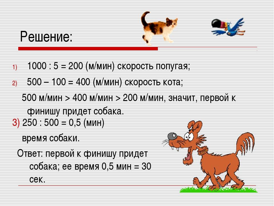 Решение: 3) 250 : 500 = 0,5 (мин) время собаки. Ответ: первой к финишу придет...