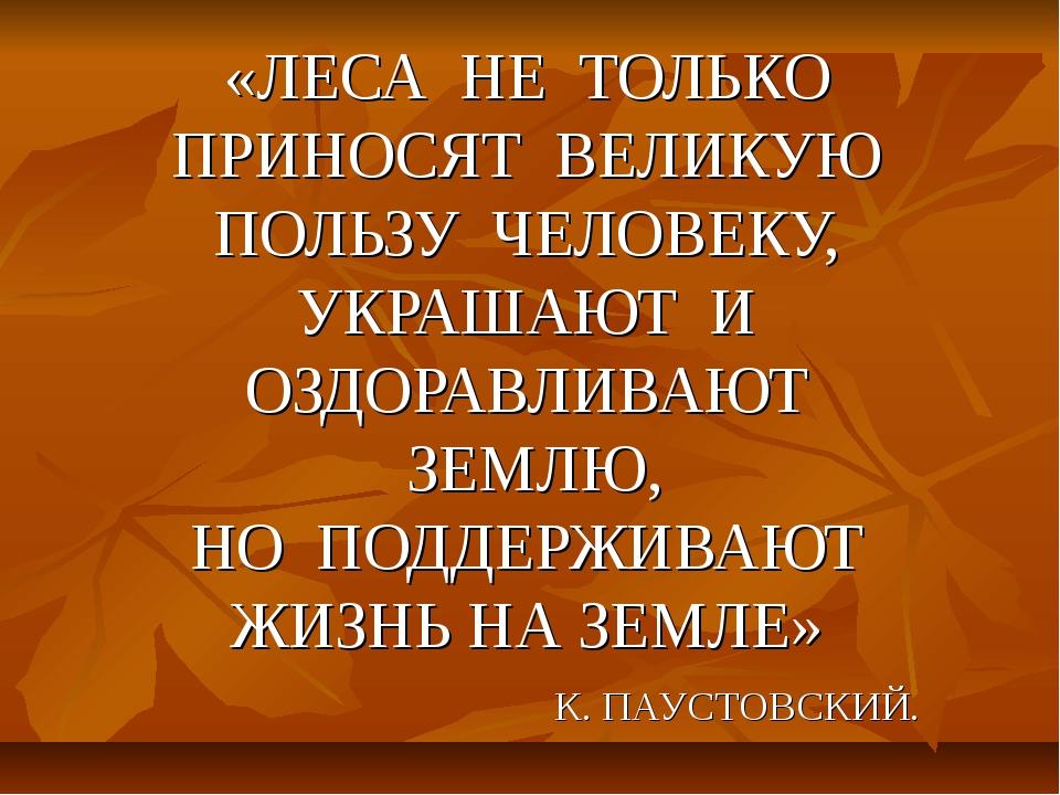 «ЛЕСА НЕ ТОЛЬКО ПРИНОСЯТ ВЕЛИКУЮ ПОЛЬЗУ ЧЕЛОВЕКУ, УКРАШАЮТ И ОЗДОРАВЛИВАЮТ З...