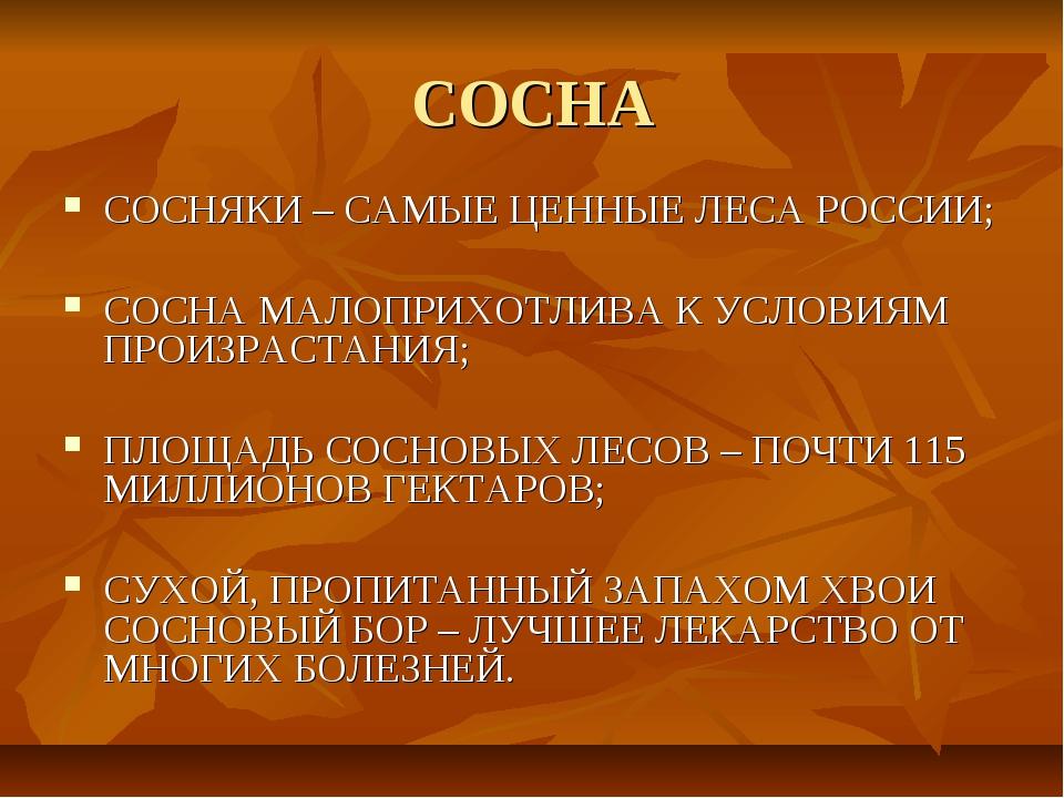 СОСНА СОСНЯКИ – САМЫЕ ЦЕННЫЕ ЛЕСА РОССИИ; СОСНА МАЛОПРИХОТЛИВА К УСЛОВИЯМ ПРО...