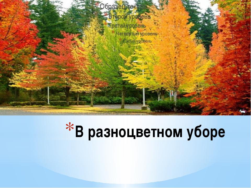 В разноцветном уборе