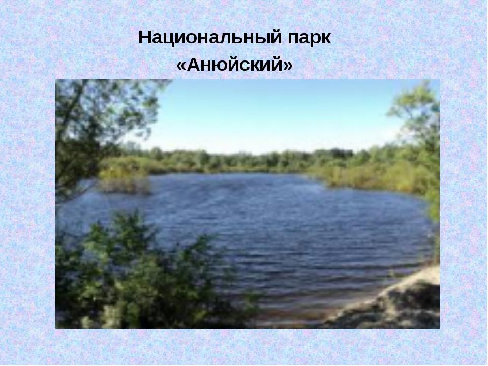 Национальный парк «Анюйский»
