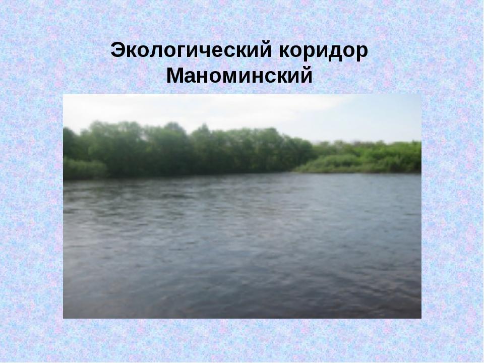 Экологический коридор Маноминский