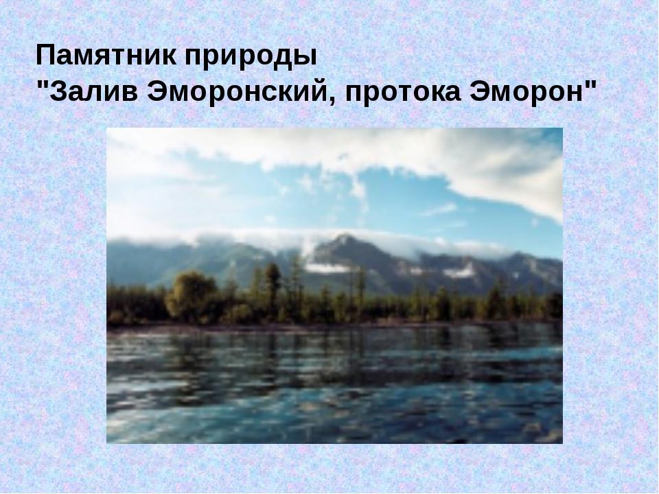 """Памятник природы """"Залив Эморонский, протока Эморон"""""""