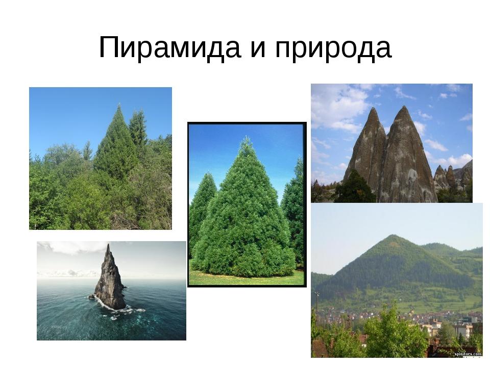 Пирамида и природа
