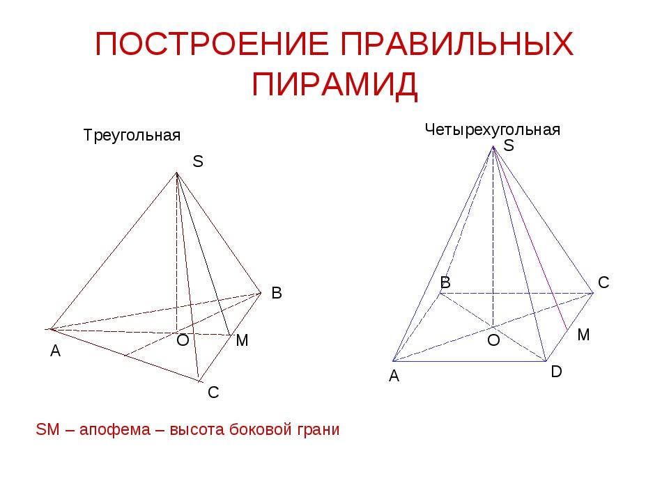 ПОСТРОЕНИЕ ПРАВИЛЬНЫХ ПИРАМИД Треугольная Четырехугольная А В С S М SM – апоф...