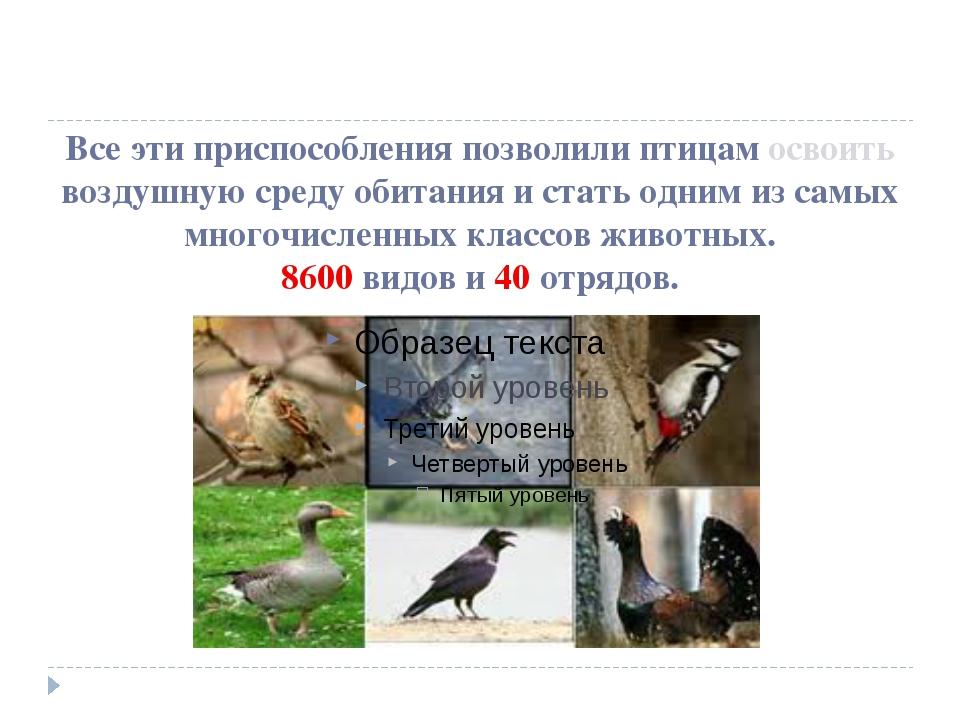Все эти приспособления позволили птицам освоить воздушную среду обитания и ст...
