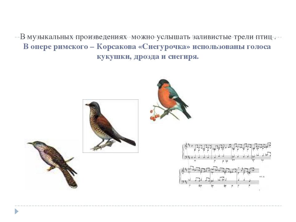 В музыкальных произведениях можно услышать заливистые трели птиц . В опере ри...