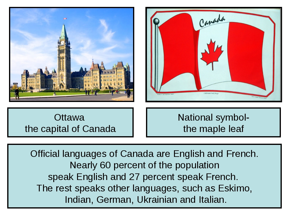 Ottawa the capital of Canada National symbol- the maple leaf Official languag...