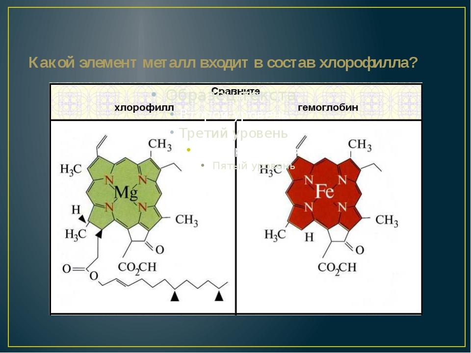 Какой элемент металл входит в состав хлорофилла?