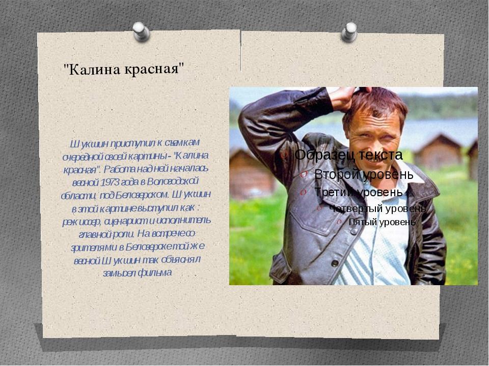 """""""Калина красная"""" Шукшин приступил к съемкам очередной своей картины - """"Калина..."""