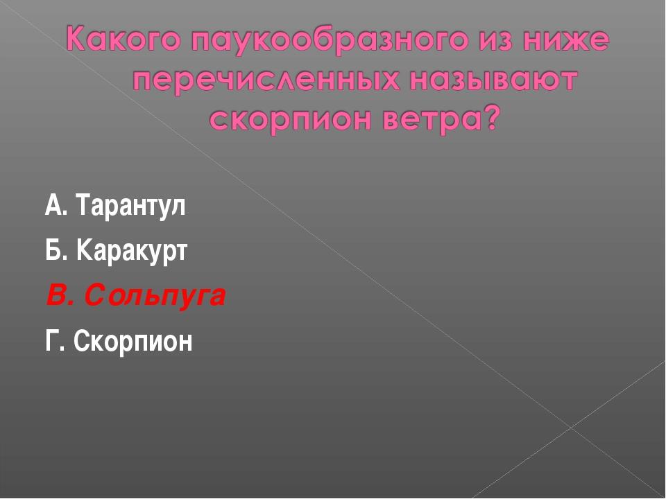 А. Тарантул Б. Каракурт В. Сольпуга Г. Скорпион