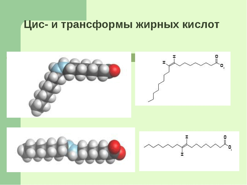 Цис- и трансформы жирных кислот