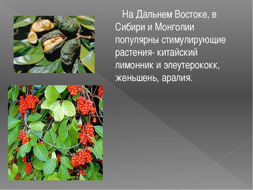 На Дальнем Востоке, в Сибири и Монголии популярны стимулирующие растения- ки...