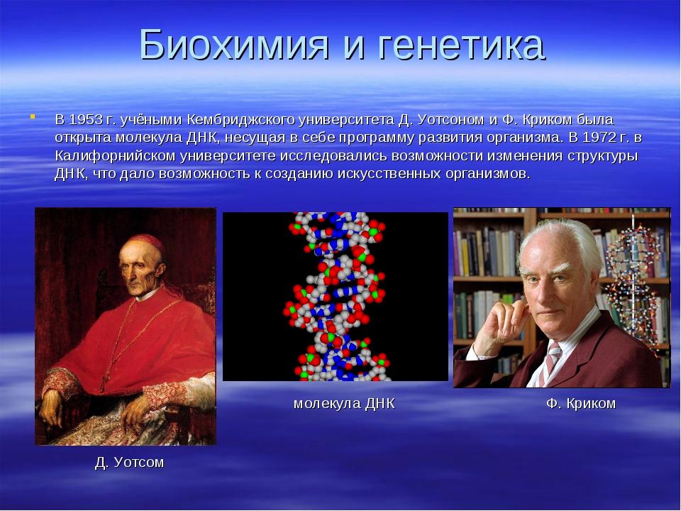 Биохимия и генетика В 1953 г. учёными Кембриджского университета Д. Уотсоном...