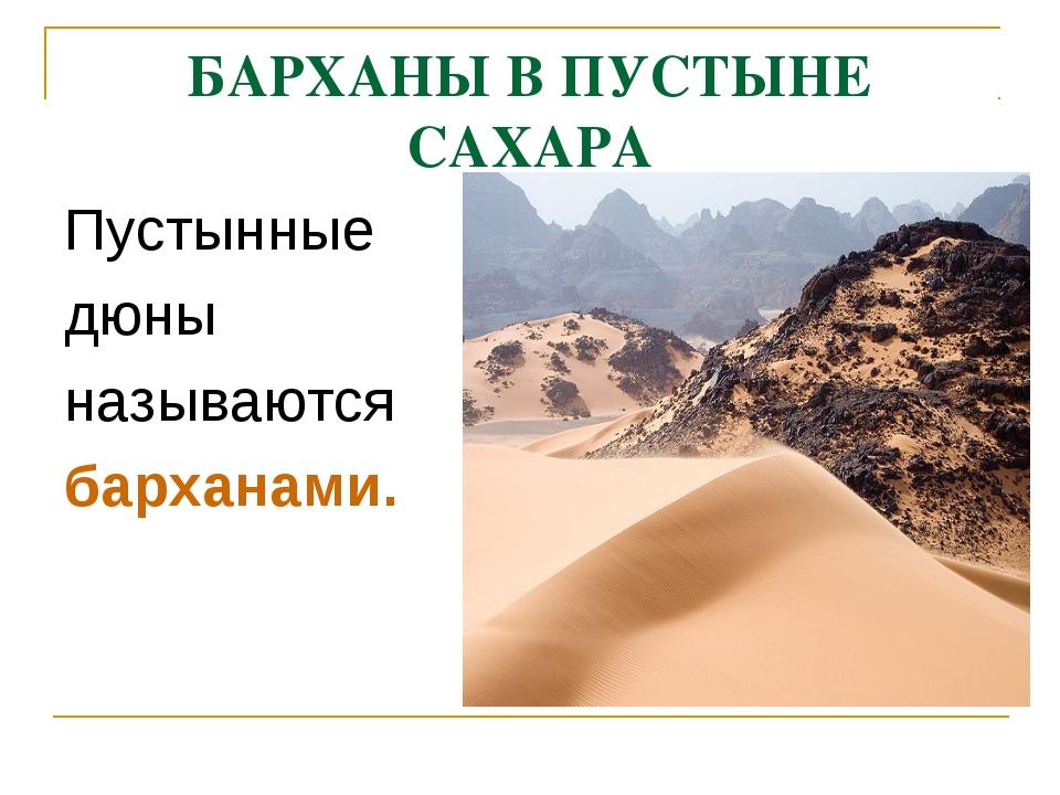 БАРХАНЫ В ПУСТЫНЕ САХАРА Пустынные дюны называются барханами.