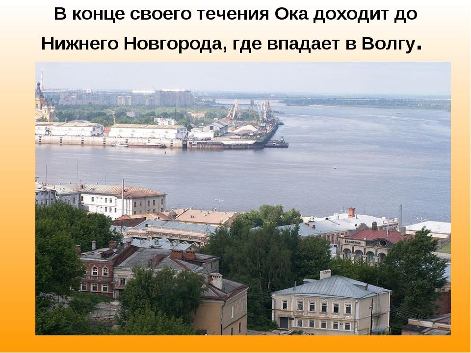 В конце своего течения Ока доходит до Нижнего Новгорода, где впадает в Волгу.