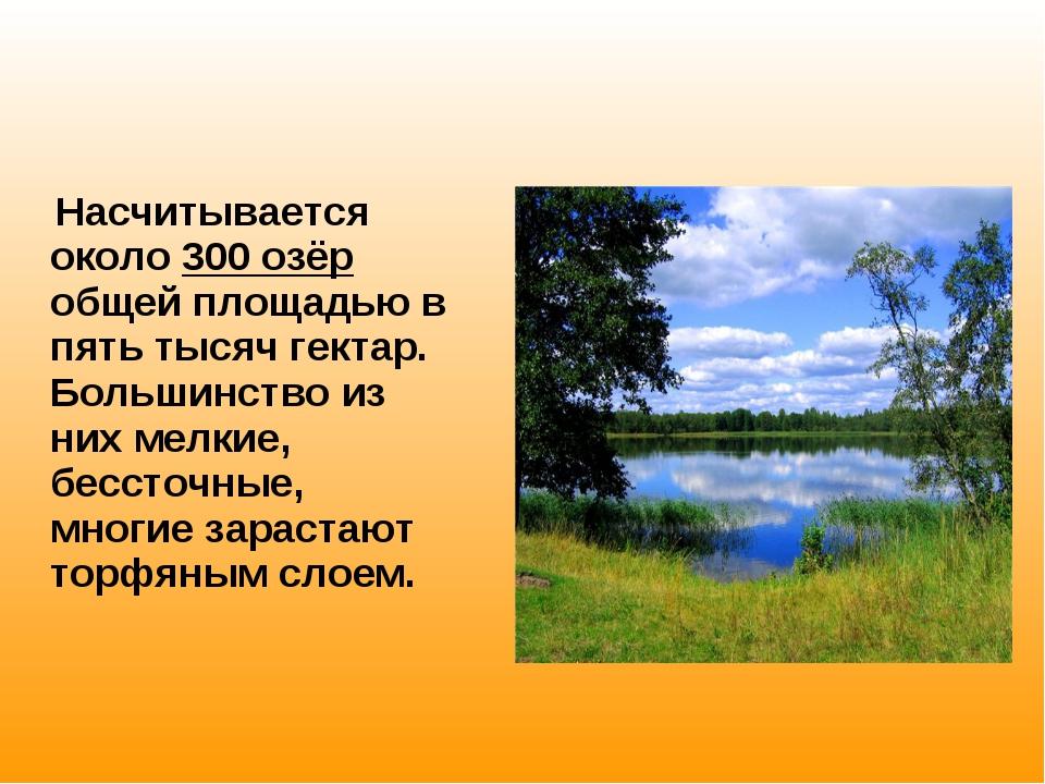 Насчитывается около 300 озёр общей площадью в пять тысяч гектар. Большинство...