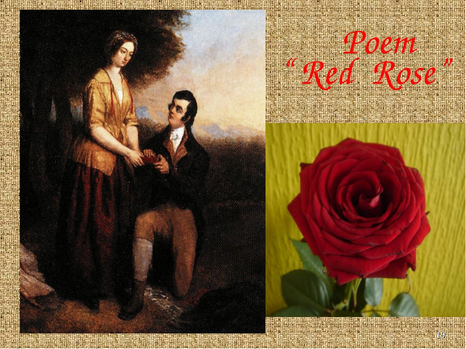 "* Poem "" Red Rose"""